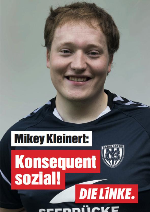 Mikey Kleinert, Student, Eidelstedt, DIE LINKE.Hamburg, Bürgerschaftswahl 2020, Download-PDF